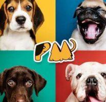 Probeer gratis proefsamples PawMall