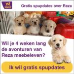 Volg Puppy Reza gratis
